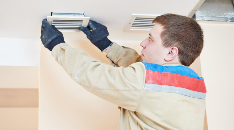Pests in HVAC system - Air America - Air Conditioning Bradenton Florida - AC Installation, Maintenance, Repair | Heating | Electical